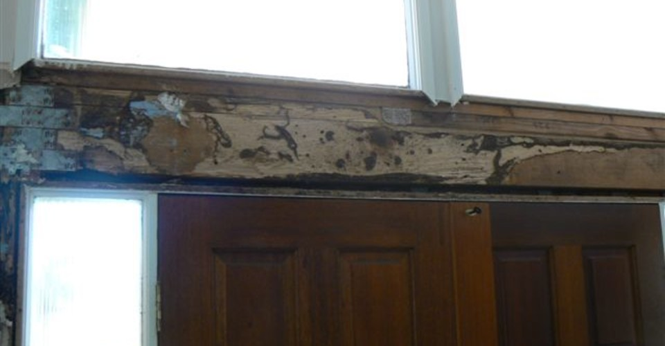Termite damage on architrave