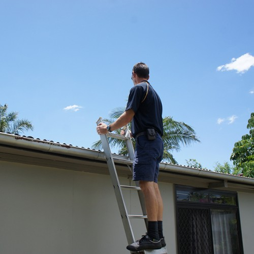 Brisbane Building And Pest Inspector Action Inspections
