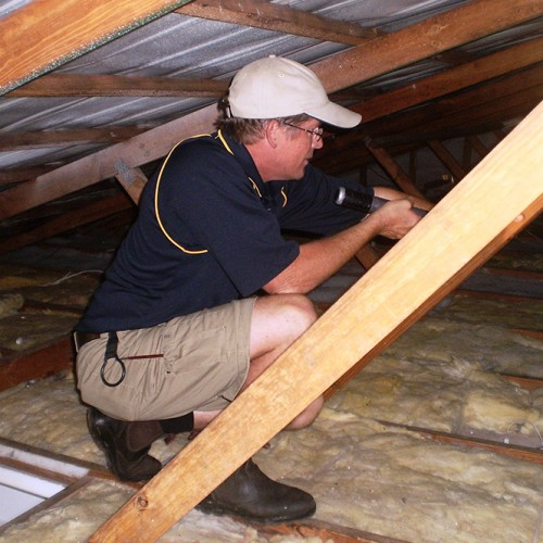 David - brisbane building & pest inspector roof void