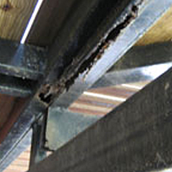 Rusting steel beams