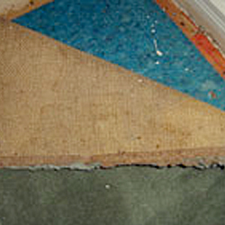 Termite workings under carpet edge