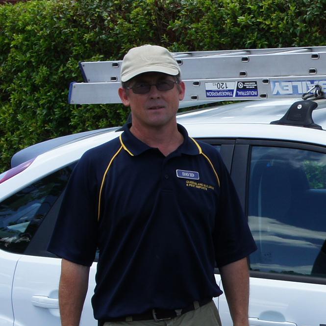 Building Amp Pest Inspection Brisbane Inspect My Home