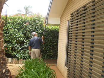 Pest inspector checking for termite damage
