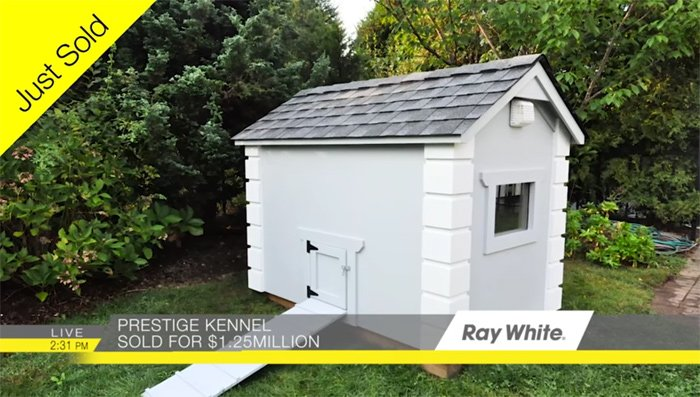 Ray White pooch palace